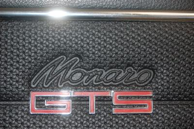 HT Door trim GTS Monaro & 1.HT Door trim GTS Monaro